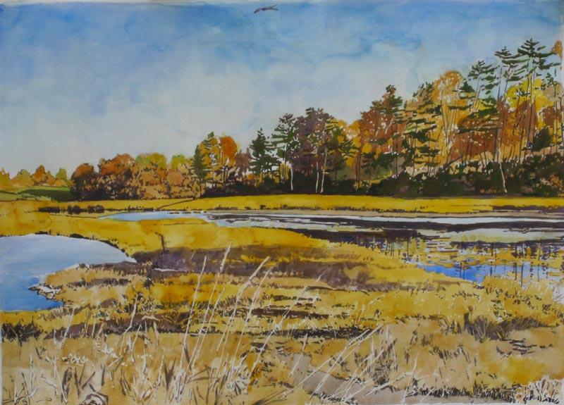 Migratory Birds and Waterfowl Habitat Paintings by Robert ...